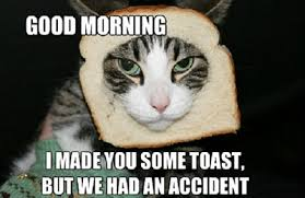Good Morning Meme - funny good morning memes 50 best