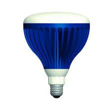 12 Volt Led Light Bulbs by Aqua Brite 22 Watt Pure White 120 Volt Led Pool Light Bulb Abpw120