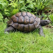 large realistic resin tortoise garden ornament co uk