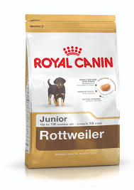 rottweiler junior dog food royal canin