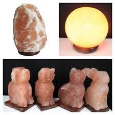 ebay himalayan salt l himalayan salt ls natural animal shapes cat dog owl rabbit