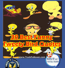 funny happy thanksgiving pic 30 best funny tweety bird quotes