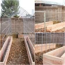 Pvc Pipe Trellis 27 Brilliant Pvc Pipe Projects For Your Yard U0026 Garden Homestead