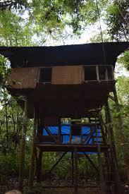 building a workshop wisdom forest u2014 permagora