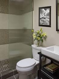 bathroom interior the nice light blue wall painting with brown