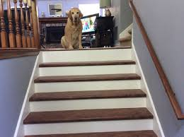 Installing Laminate Flooring On Stairs Stair Runner On Prefinished Laminate Stair Treads