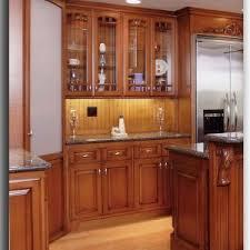 Kitchen Cabinets Lighting Furniture Fantastic Rta Kitchen Cabinets For Modern Kitchen