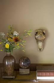 8 best deer skull designs images on pinterest deer skulls skull