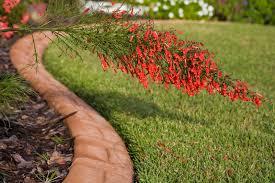 flower bed edging ideas lovetoknow