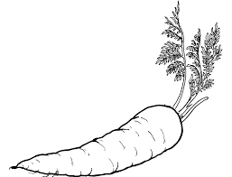 carrots coloring page of vegetables carrots and vegetables