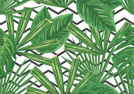 green palm branches palm sunday background download free vector