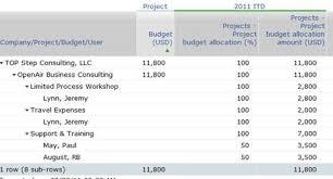 doc 580626 sample sales budget u2013 sample sales budget 5 example