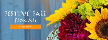 orange park florist hyde park florist flower delivery by flowers