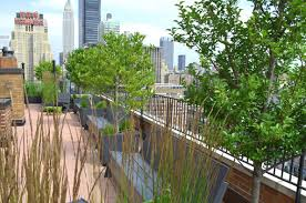 co op and condo roof garden new york city ny ny by jeffrey erb