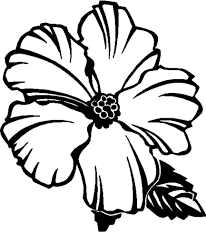 free printable hibiscus coloring pages for kids throughout page