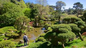 Historical Pictures View Images Of San Francisco Japanese Tea Garden