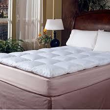 Head In Comfortable Bed Mattress Pads U0026 Toppers You U0027ll Love Wayfair