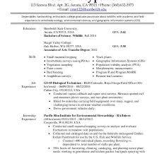 resume format usa federal job resume format resume format and