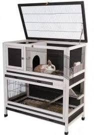 Rabbit Hutch Wood 147 Best Rabbit Hutchs Images On Pinterest Rabbit Cages Bunny