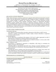 Sample Security Resume by It Resume Samples Infotechresume