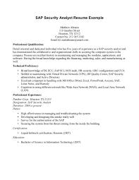 Professional Architect Resume Sample Sap Architect Resume Resume Cv Cover Letter