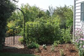 in the garden trellises transform look of fence the spokesman