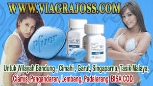 viagra usa 100mg asli viagra di bandung
