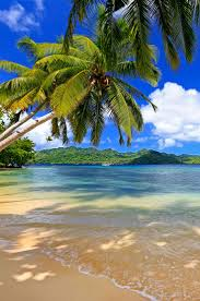 171 best islands beaches and reefs images on pinterest