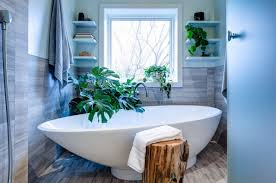 Best Plants For Bathroom The Best Bathroom Plants For Your Interior