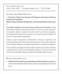 resume summary of qualifications management executive resume summary k executive summary executive summary