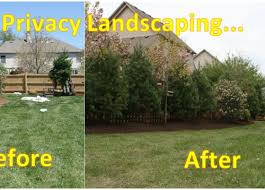 Backyard Privacy Ideas Backyard Charming Ideas For Backyard Privacy Wonderful Privacy