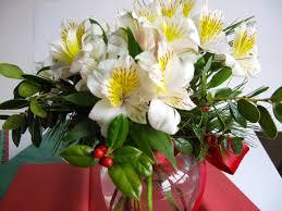 gift arrangements euphorbia pulcherrima poinsettia pbmgarden