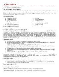 Channel Sales Manager Resume Sample by Strategic Planning Resume Examples Free Resume Example And