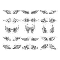 collection of wing designs vector image 1874008 stockunlimited