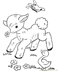 Lambs Calf Playing Coloring Page Free Easter Lambs Coloring Sw Coloring Page