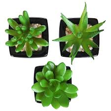Fake Plants For Home Decor Amazon Com Set Of 3 Modern Home Decor Mini Succulent Artificial
