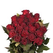 global roses globalrose fresh black baccara color roses 250 stems