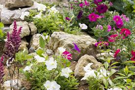rocks in garden design rock garden design ideas guide pro tips install it direct
