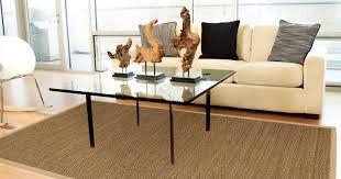 Bamboo Outdoor Rug Living Room Modern Oriental Rugs In Living Rooms Refreshing