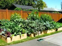 Small Vegetable Garden Design Ideas Raised Backyard Garden Raised Vegetable Garden Ideas Backyard