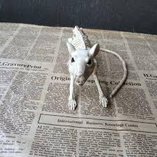 Halloween Decorations Skeleton Bones by Best Skeleton Rat 100 Plastic Animal Skeleton Bones For Horror