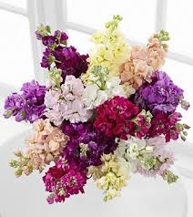 cheap flowers free delivery 47 best floral arrangements images on floral