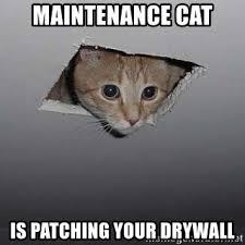 Drywall Meme - maintenance cat is patching your drywall ceiling cat meme generator