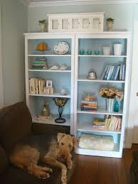 how i styled my bookshelves barnaclebutt