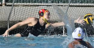 chs polo all lpl water polo and teams announced sports