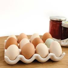 ceramic egg tray 12 stylish ceramic egg holder farmcurious