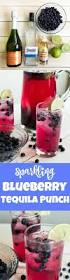 best 25 alcohol punch ideas on pinterest wine mixed drinks