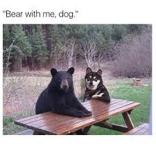 Bear At Picnic Table Meme - 12 memes that will make your monday feel like a friday fashion
