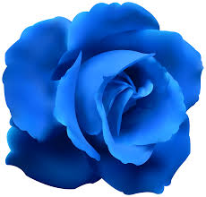 Blue Roses Blue Rose Cliparts Free Download Clip Art Free Clip Art On