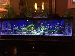 stunning design christmas fish tank decorations aquarium decorate